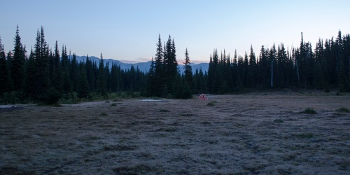 Campsite at dawn